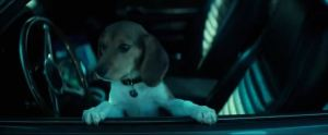 Granted, this one just must have been the cutest dog in film history.
